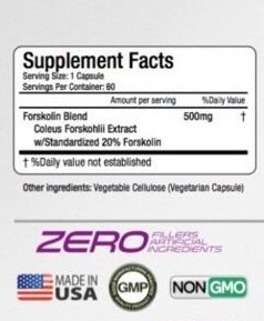 Forskolin Extract Nutrition Facts